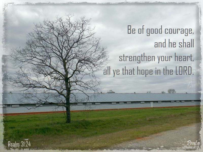 be strong verse