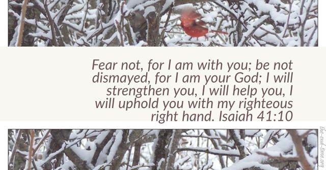 fear not verse