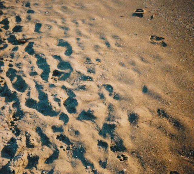 sand_0001