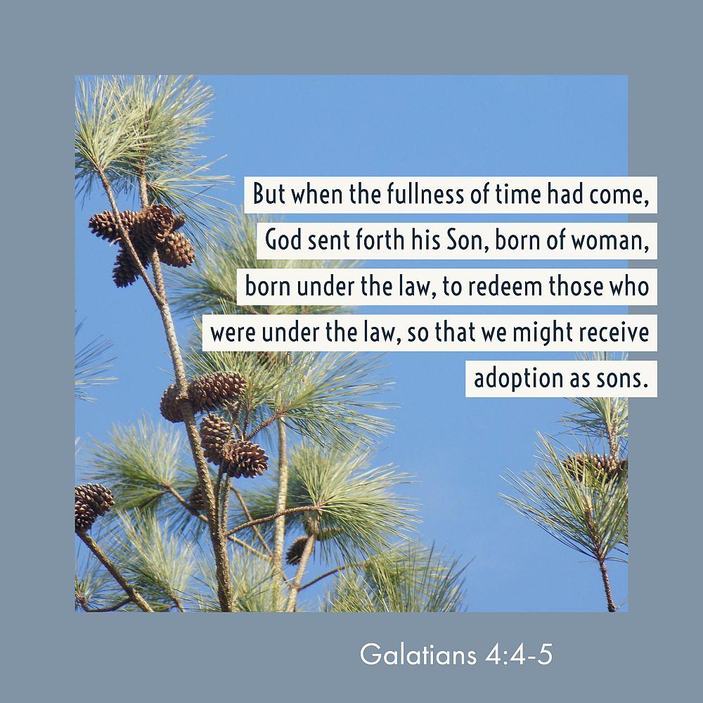 thirty days of jesus verse 3