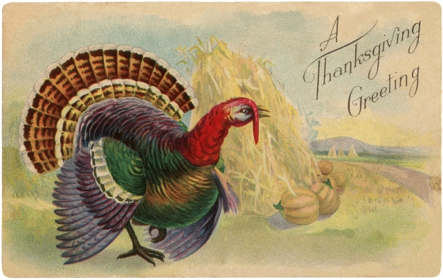 Vintage-Thanksgiving-Turkey-Postcard-GraphicsFairy