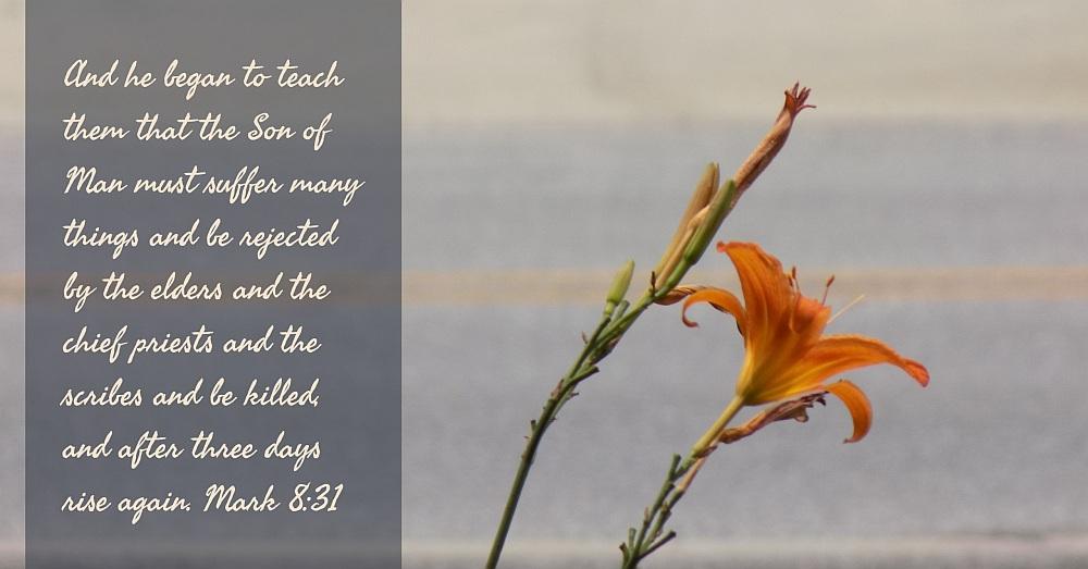 thirty days of jesus 27