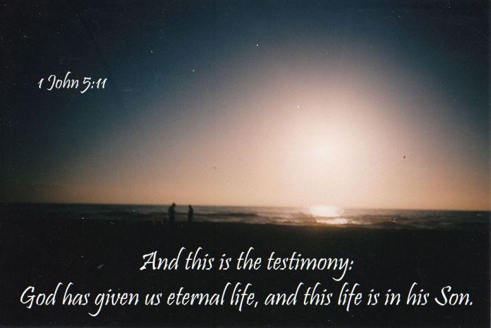 thirty days of Jesus day 15