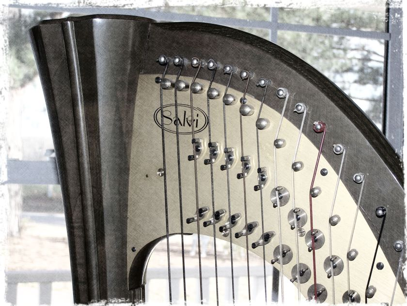 wed harp