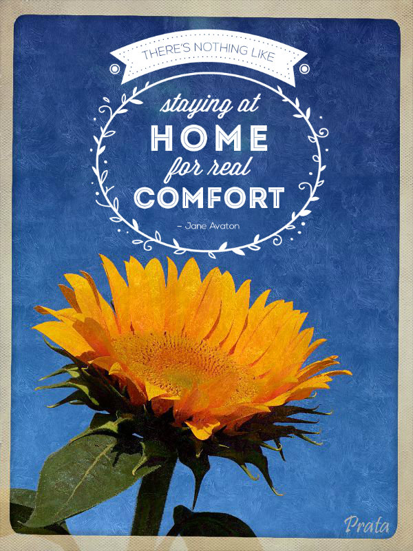 quote sunflower home comfort