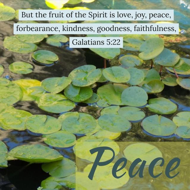 peace verse.jpg