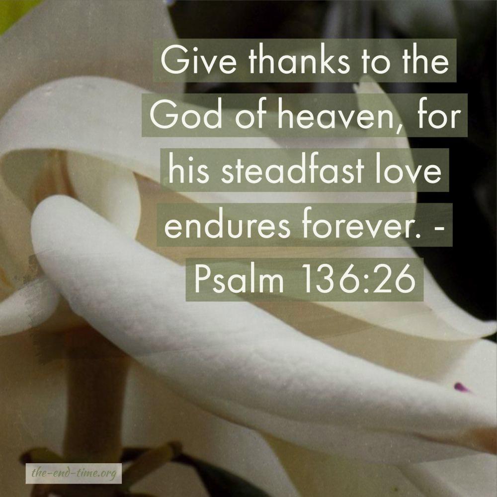 love forever verse
