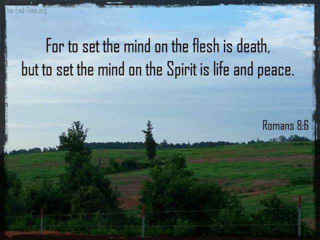 set the mind verse