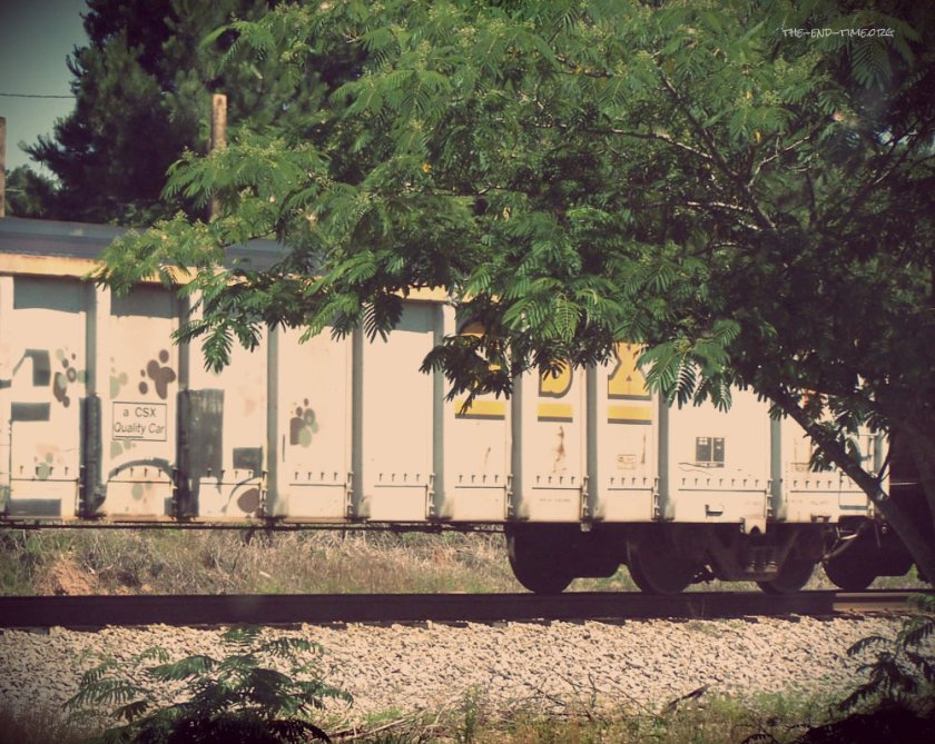 train coming 3.jpg