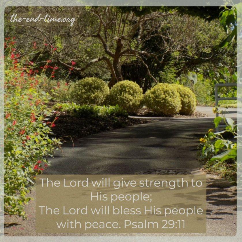 peace3verse