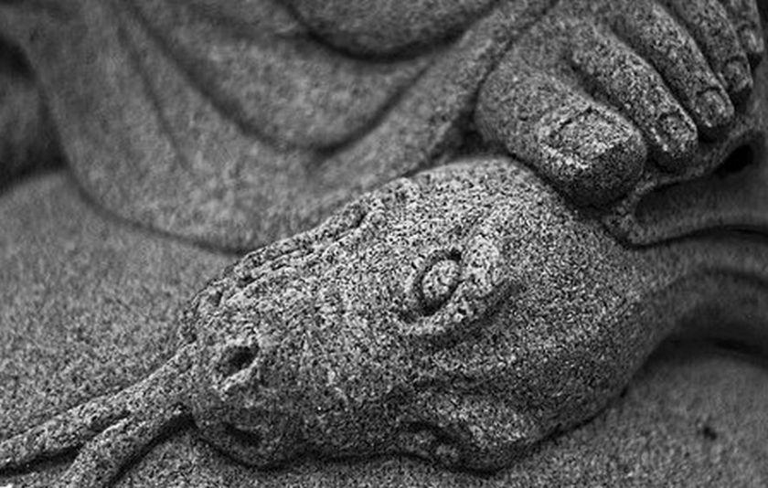 blog serpent crushed