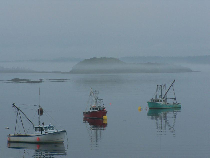 foggy boatsa