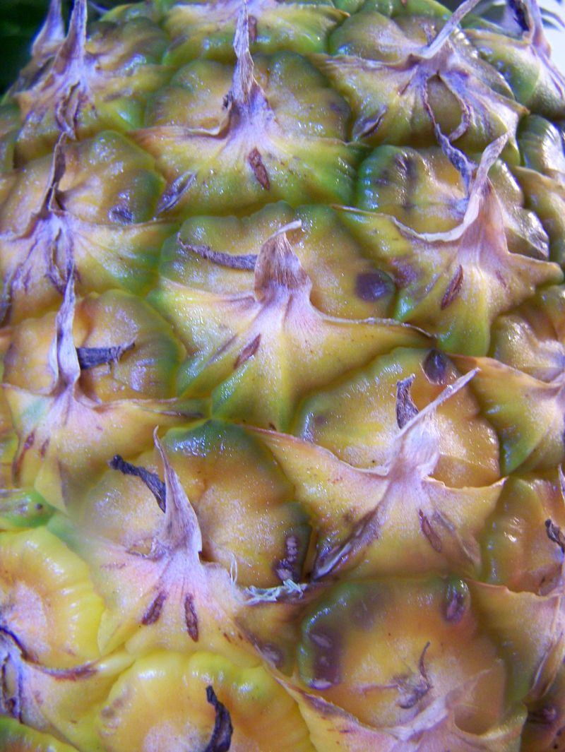 pineapple scales