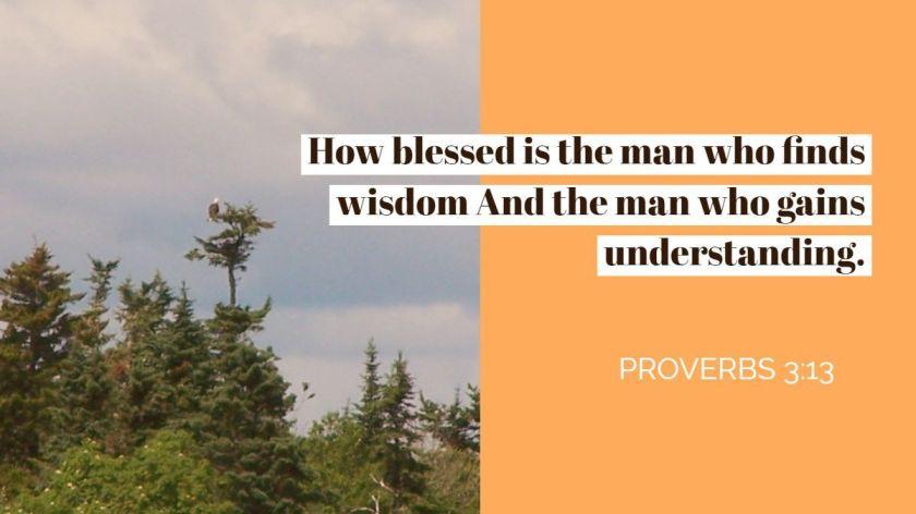 wisdom verse 3